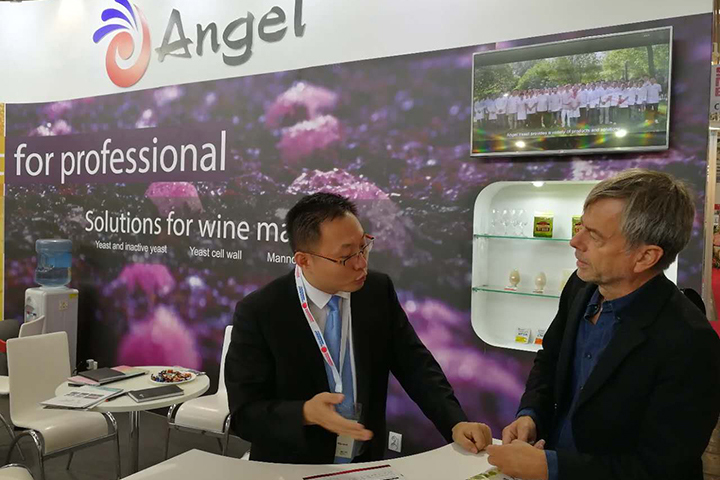 Review: 10 international events of Angel 2017