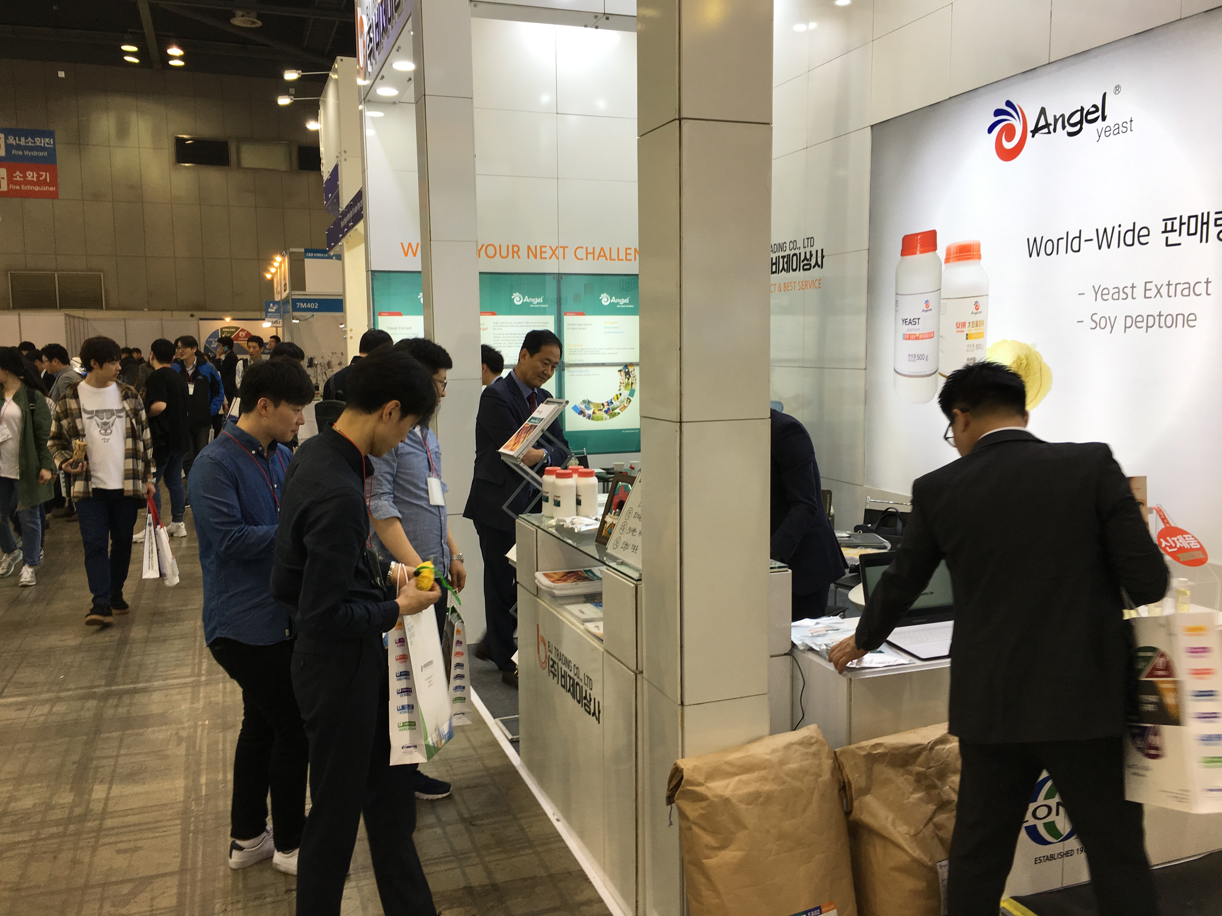Angel microbial nutrition in Cophex Korea 2018