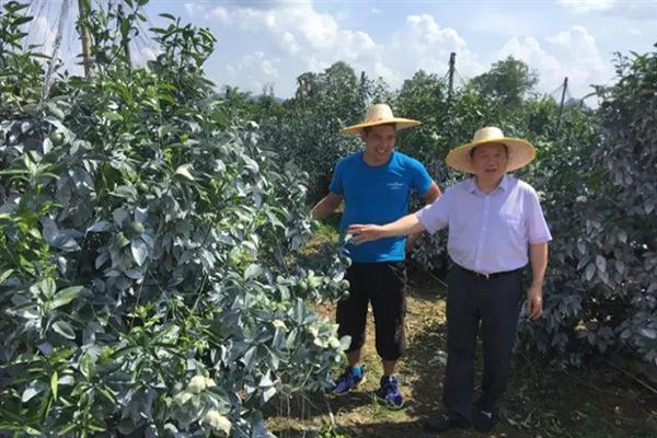 President Xuefeng Yu visited the farms in Guangxi