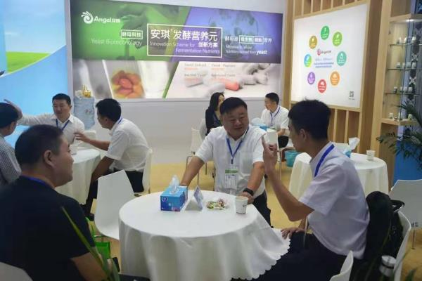 Angel participated in the 7th Shanghai International Bio-fermentation Products and Technology Equipment Exhibition