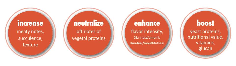 functions-vegan-01-01.jpg