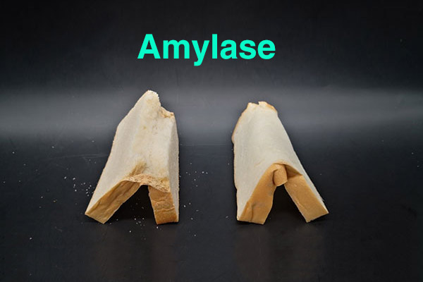 Application of amylases in baking industry